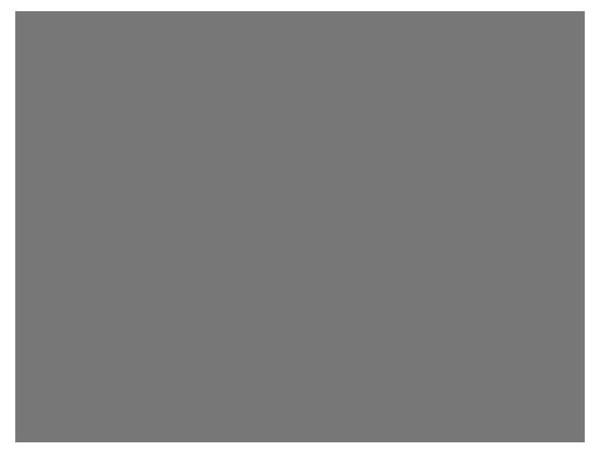 Meisterfotografie Franziska Allner